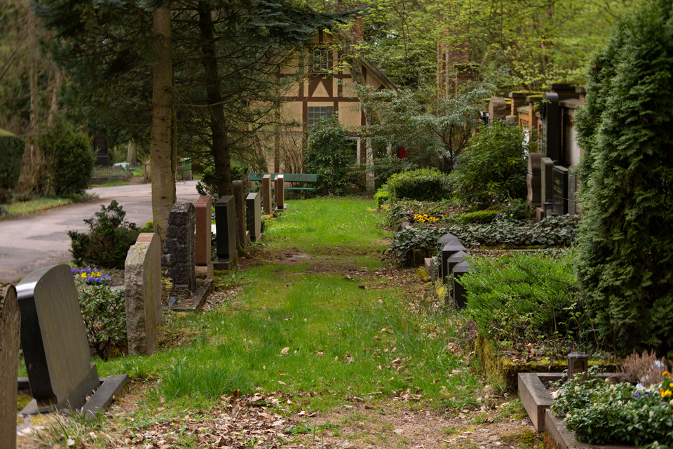 Nordfriedhof_April_2018#31-9395