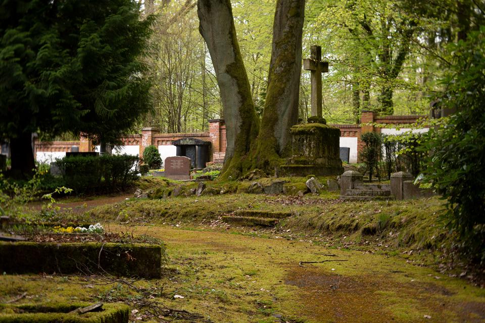 Nordfriedhof_April_2018#37-9405