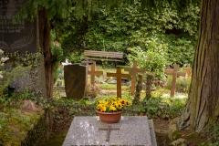 Nordfriedhof_April_2018#40-9418