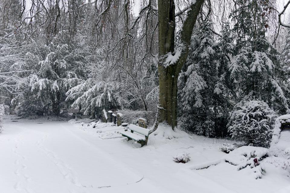 Wiesbaden Nordfriedhof_Dezember_0017