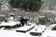 Wiesbaden Nordfriedhof_Dezember_0006