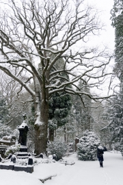 Wiesbaden Nordfriedhof_Dezember_0009