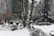Wiesbaden Nordfriedhof_Dezember_0011