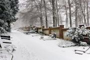 Wiesbaden Nordfriedhof_Dezember_0013