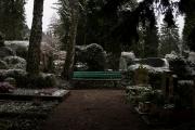 nordfriedhof_feb#16-6610