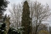 nordfriedhof_feb#17-6620