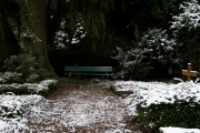 nordfriedhof_feb#14-6605