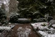 nordfriedhof_feb#15-6607
