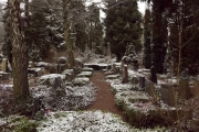 nordfriedhof_feb18#8-6589