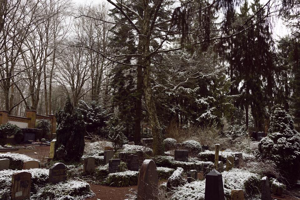 nordfriedhof_feb18#9-6590