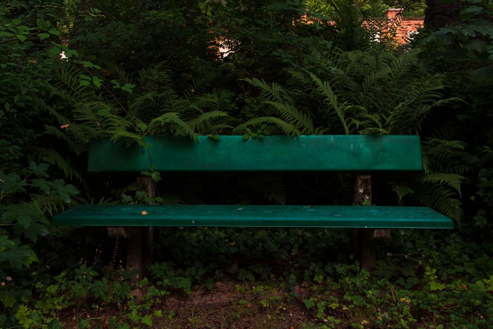 Nordfriedhof_Juli#19-3980