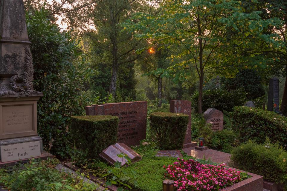 Nordfriedhof_Juli#26-4010