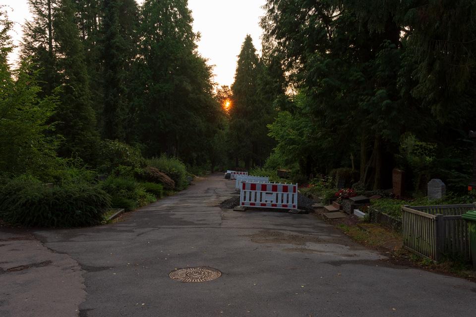 Nordfriedhof_Juli#29-4037