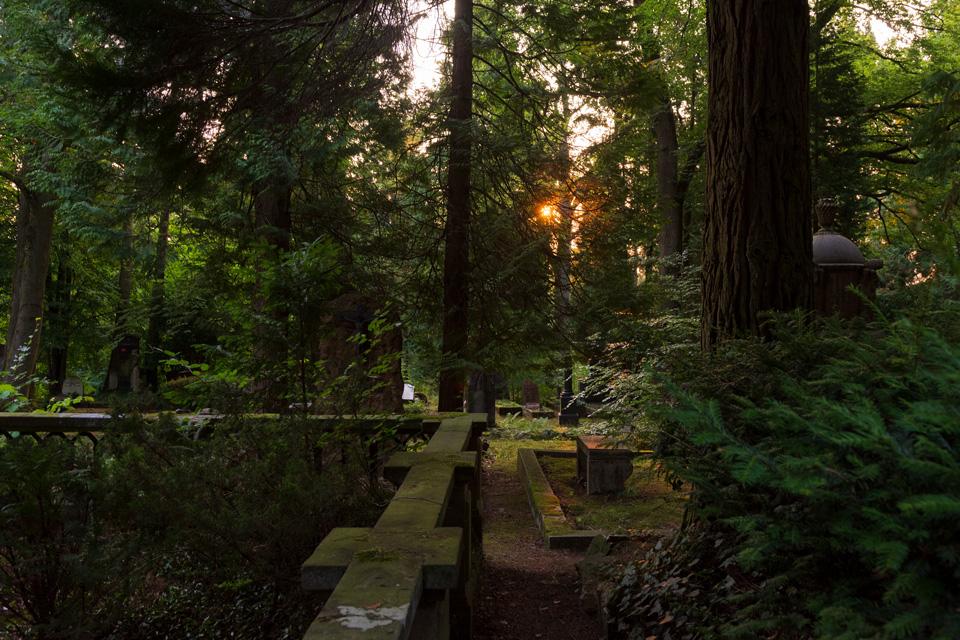 Nordfriedhof_Juli#33-4073