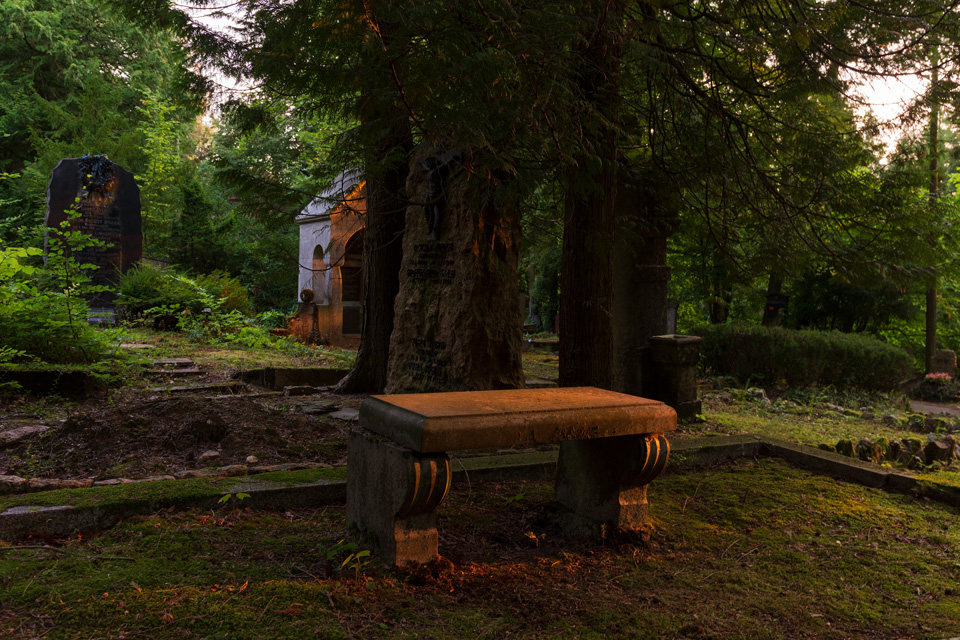 Nordfriedhof_Juli#35-4093