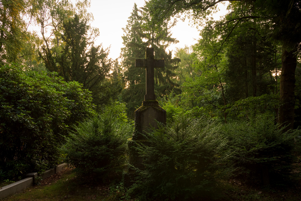 Nordfriedhof_Juli#38-4107