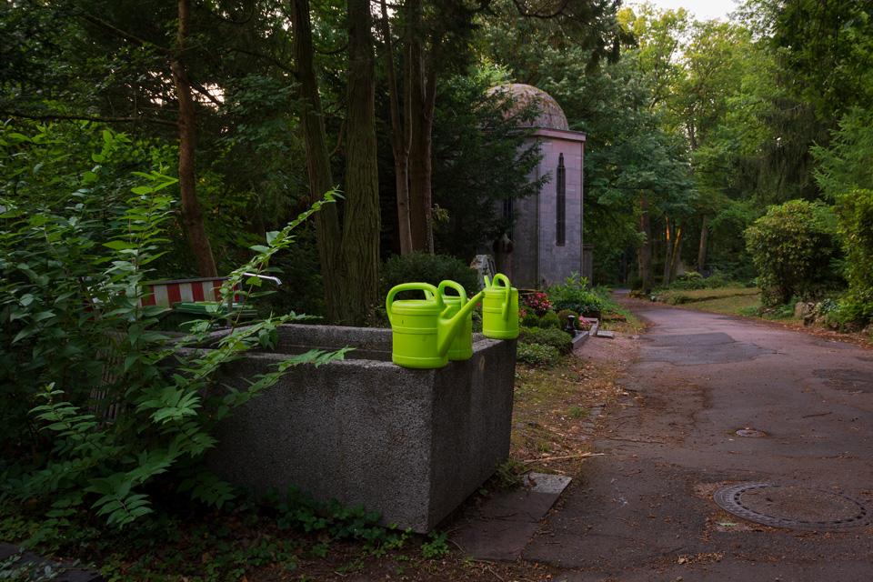 Nordfriedhof_Juli#39-4113