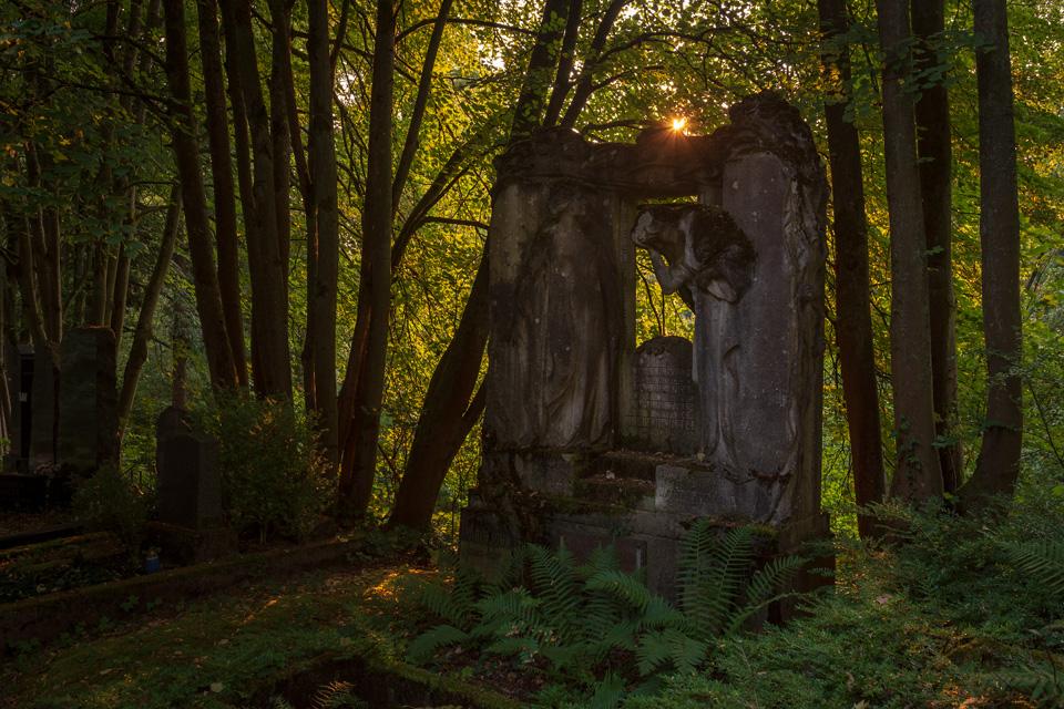 Nordfriedhof_Juli#42-4133