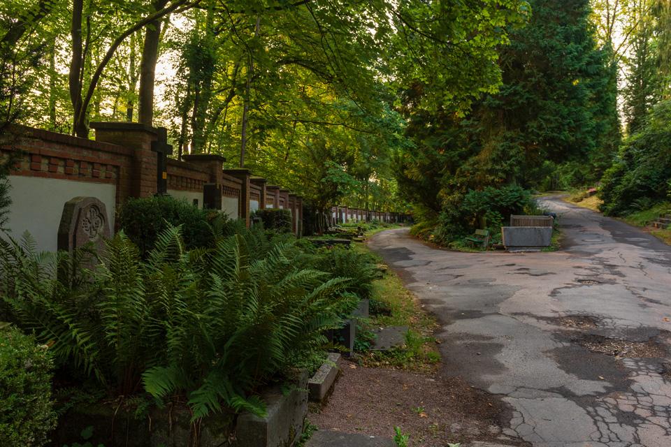 Nordfriedhof_Juli#45-4174