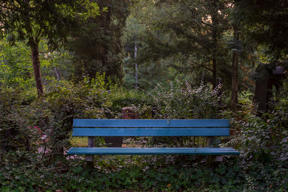 Nordfriedhof_Juli#54-4215
