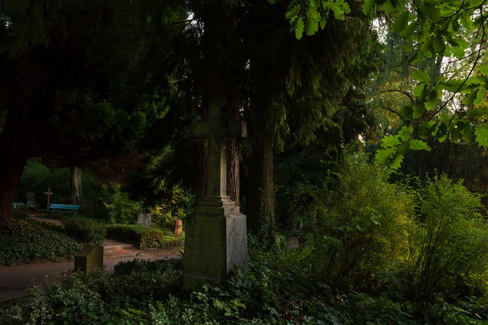 Nordfriedhof_Juli#58-4234