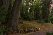 Nordfriedhof_Juli#32-4068
