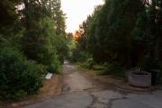 Nordfriedhof_Juli#25-4013