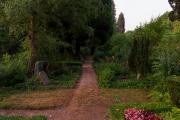 Nordfriedhof_Juli#27-4026