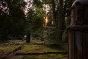 Nordfriedhof_Juli#34-4078