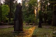 Nordfriedhof_Juli#36-4095