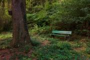 Nordfriedhof_Juli#43-4149