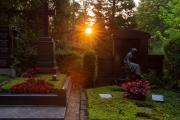 Nordfriedhof_Juli_2018#7-4047