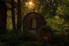 Nordfriedhof_Juli#41-4126