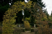 N_FriedhofOkt#14-3620