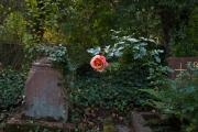 N_FriedhofOkt#31-3675