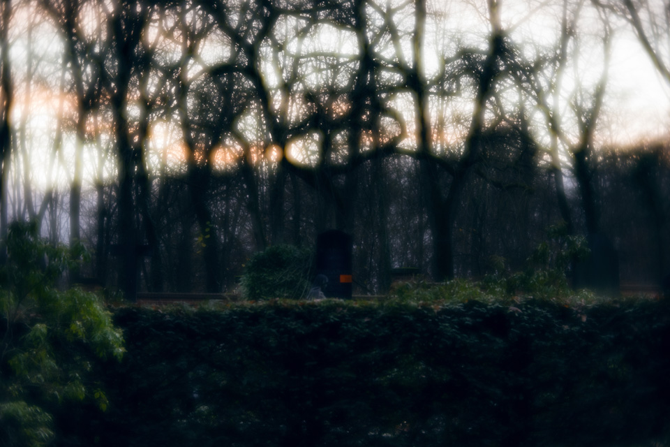 nordfriedhof_totensonntag#12-4666
