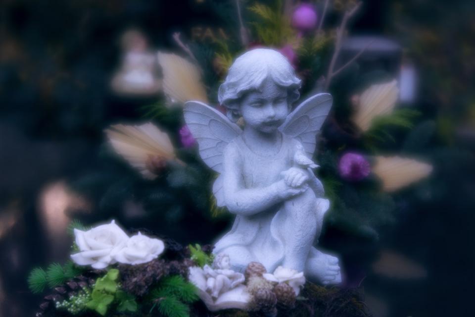 nordfriedhof_totensonntag#25-4624