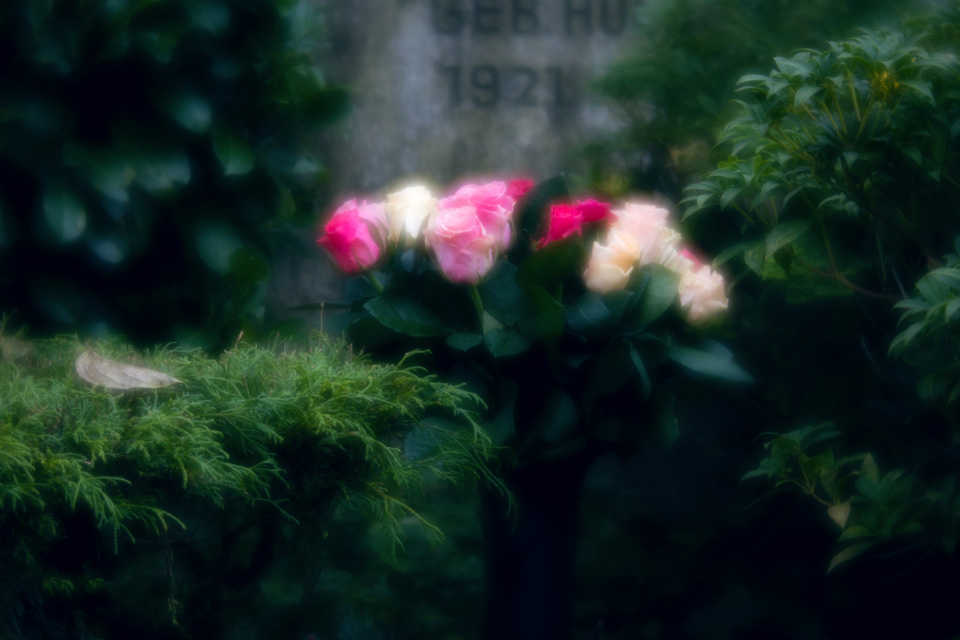nordfriedhof_totensonntag#26-4621