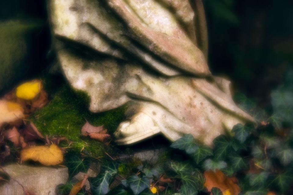 nordfriedhof_totensonntag#9-4670