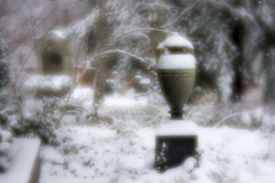 urne_velvet-6819