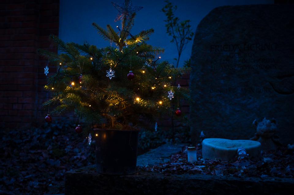 Nf_Weihnachten09-62367