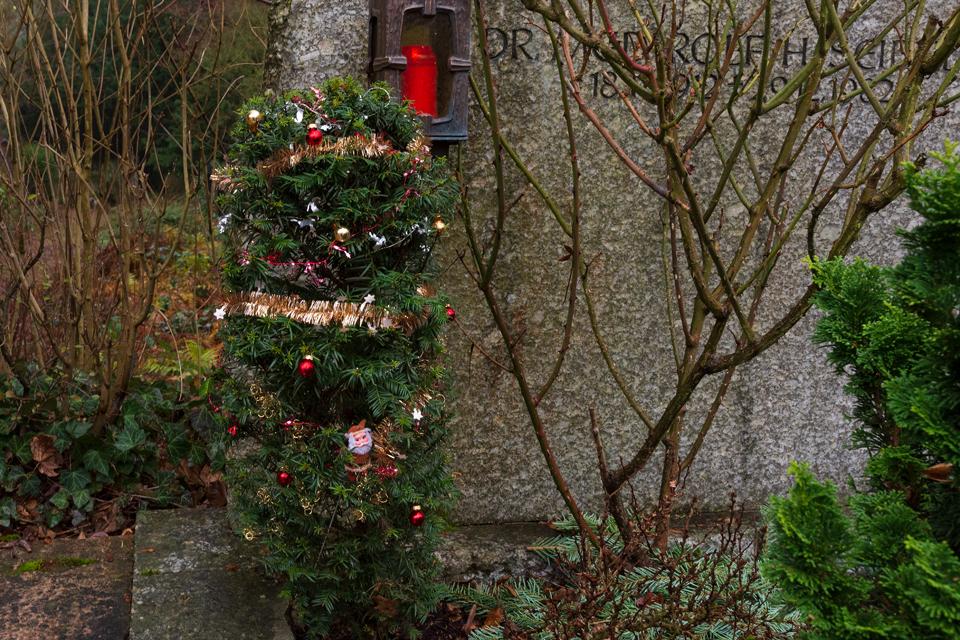 Nf_Weihnachten12-1371