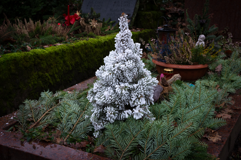 Nf_Weihnachten21-1435