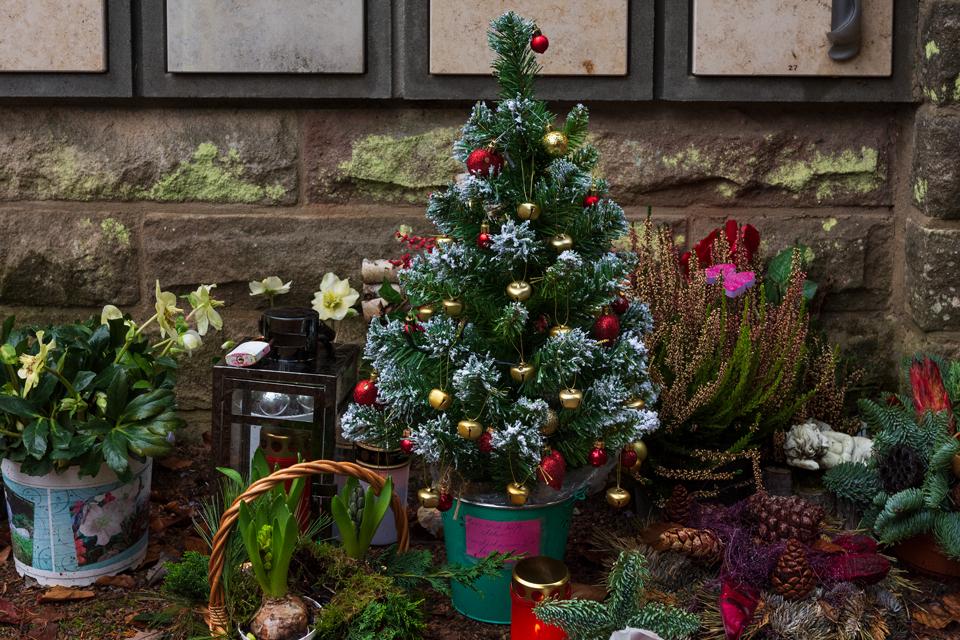 Nf_Weihnachten25-1463