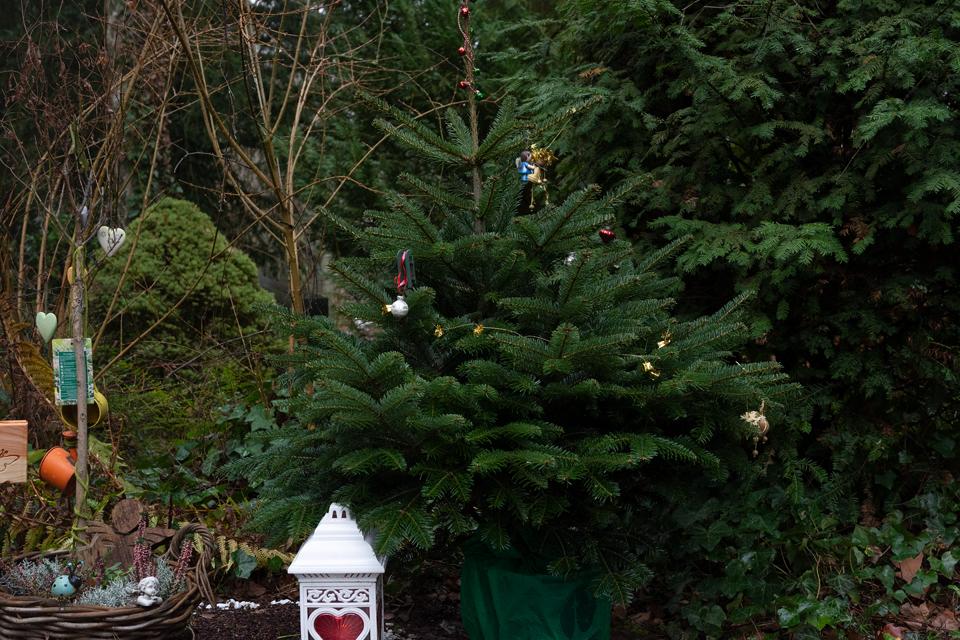 Nf_Weihnachten36-1530